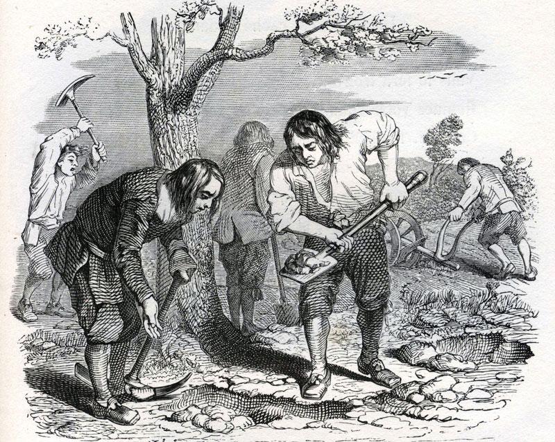 Le laboureur et ses enfants